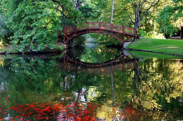 Uno squarcio del lago all'interno del Johannapark di Lipsia